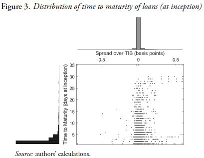 Figure 3. Distribution of time to maturity of loans (at inception)